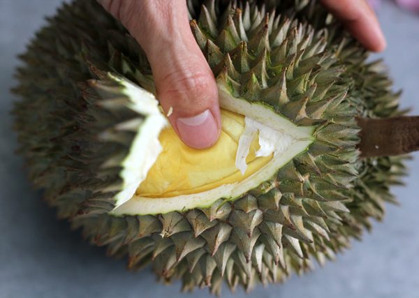 Indulge on Your Durian Through These Fun and Exciting Ways