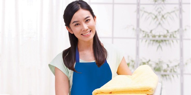 Vital Things You Need to Know About Maid Insurance